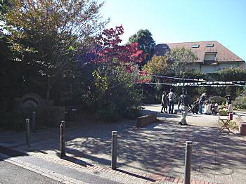下落合東公園.jpg